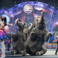 Ringling Bros. Circus at Patriot Center April 9-20