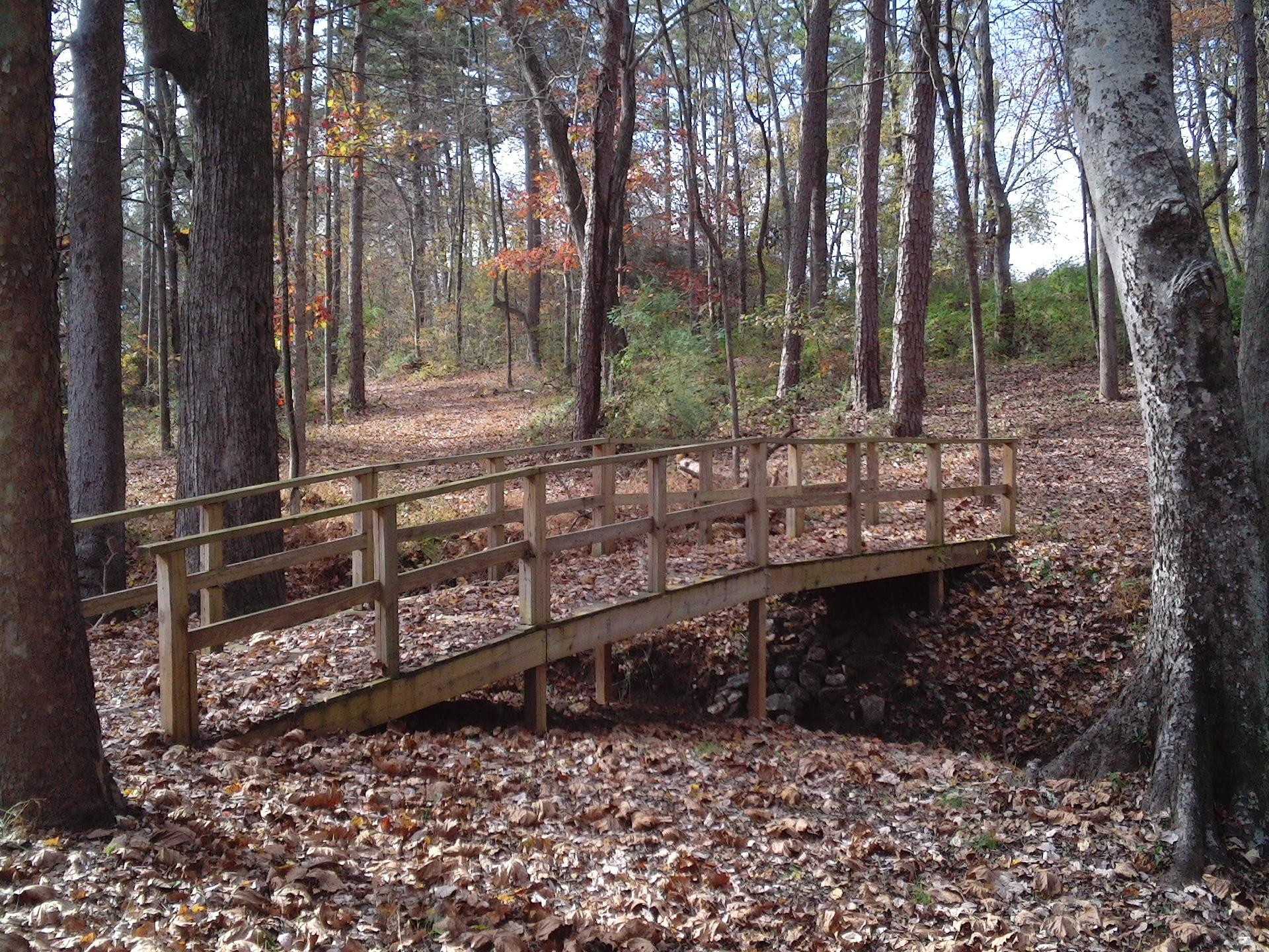 Color photo of a small walking bridge on a park, hiking, outdoor play