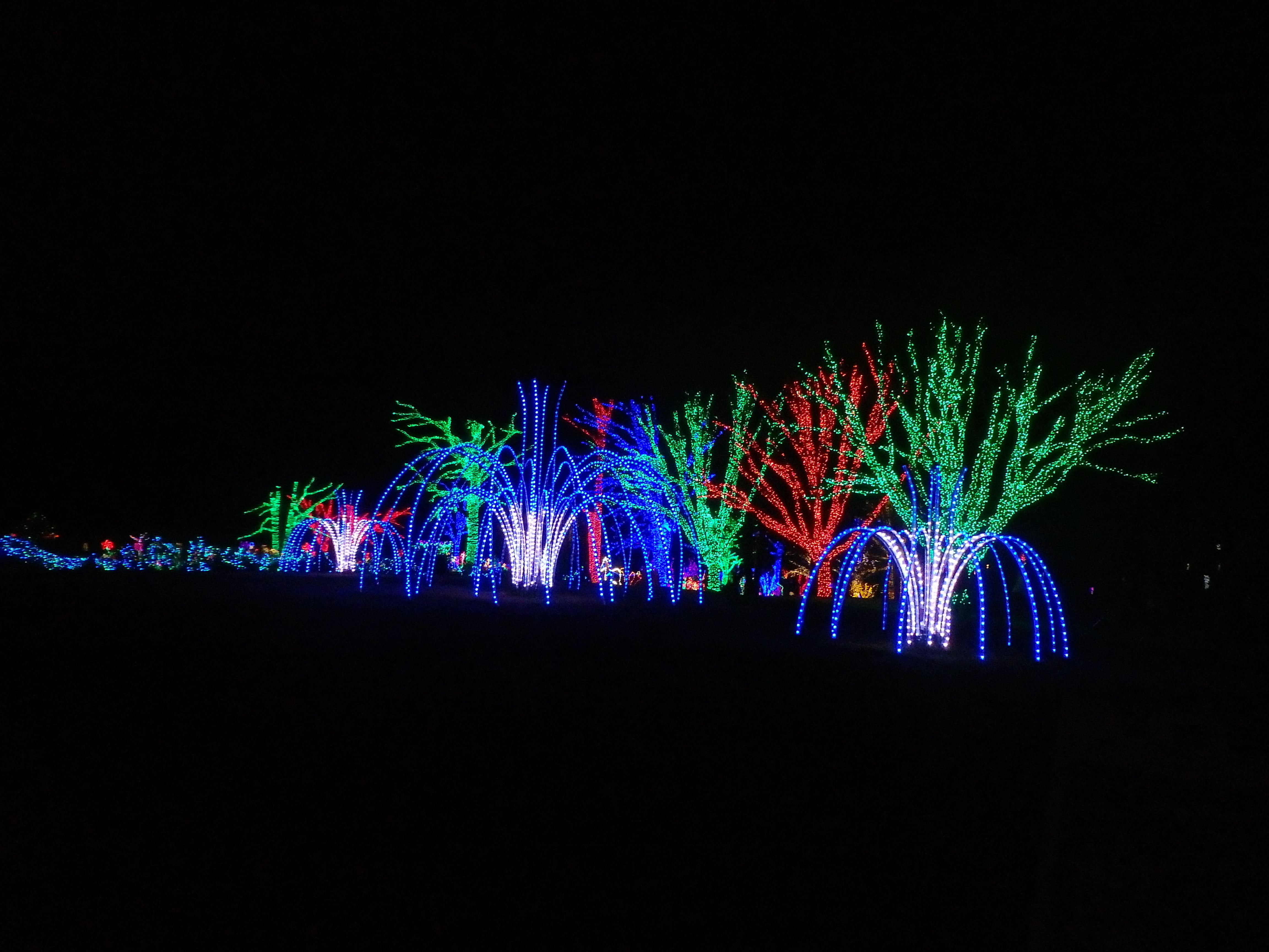 Winter Walk of Lights Meadowlark Botanical Gardens Northern Virginia Regional Park Authority illumination lights Christmas holiday light show family travel