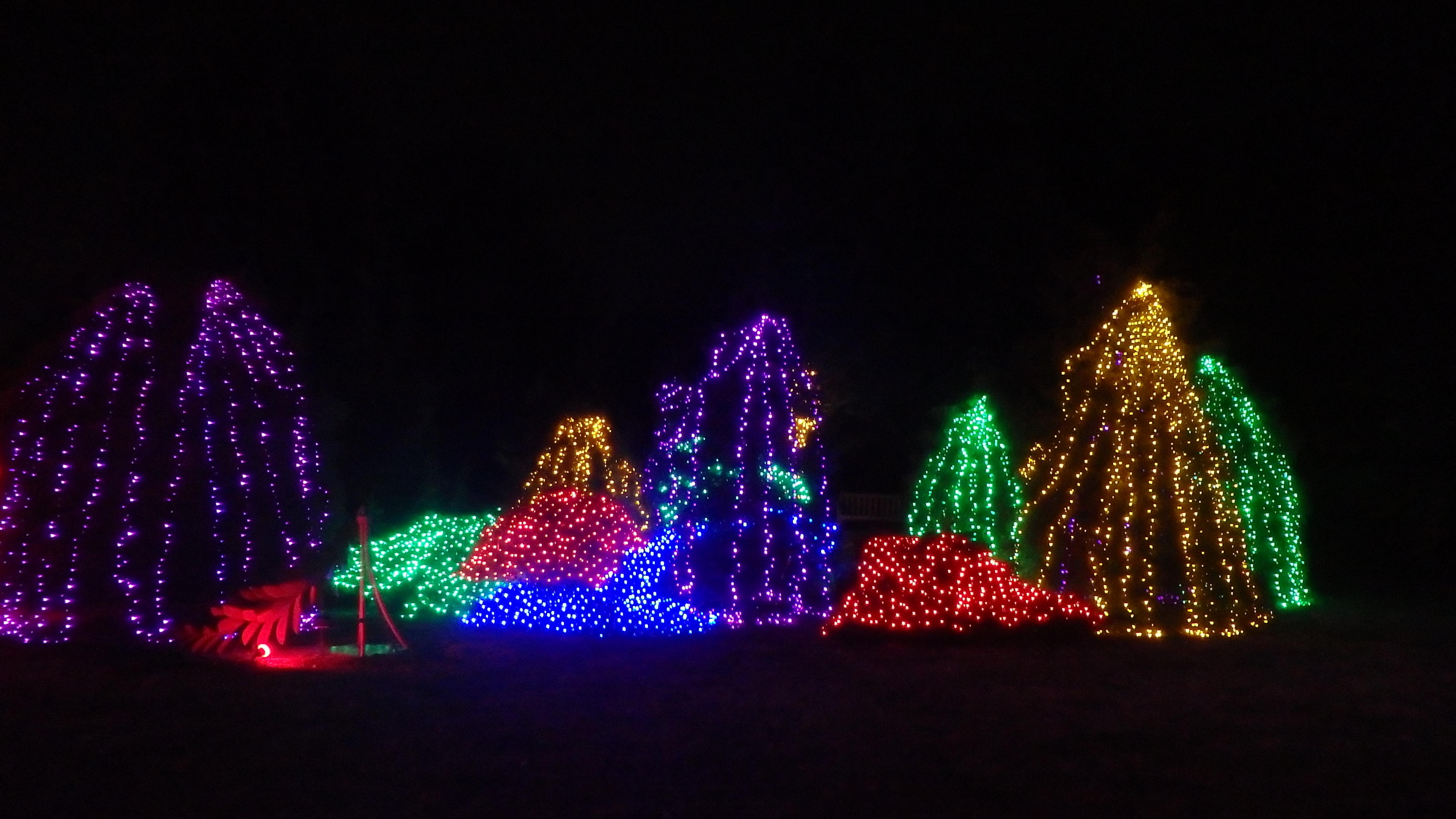Winter Walk of Lights Meadowlark Botanical Gardens Northern Virginia Regional Park Authority illumination lights Christmas holiday light show family travel