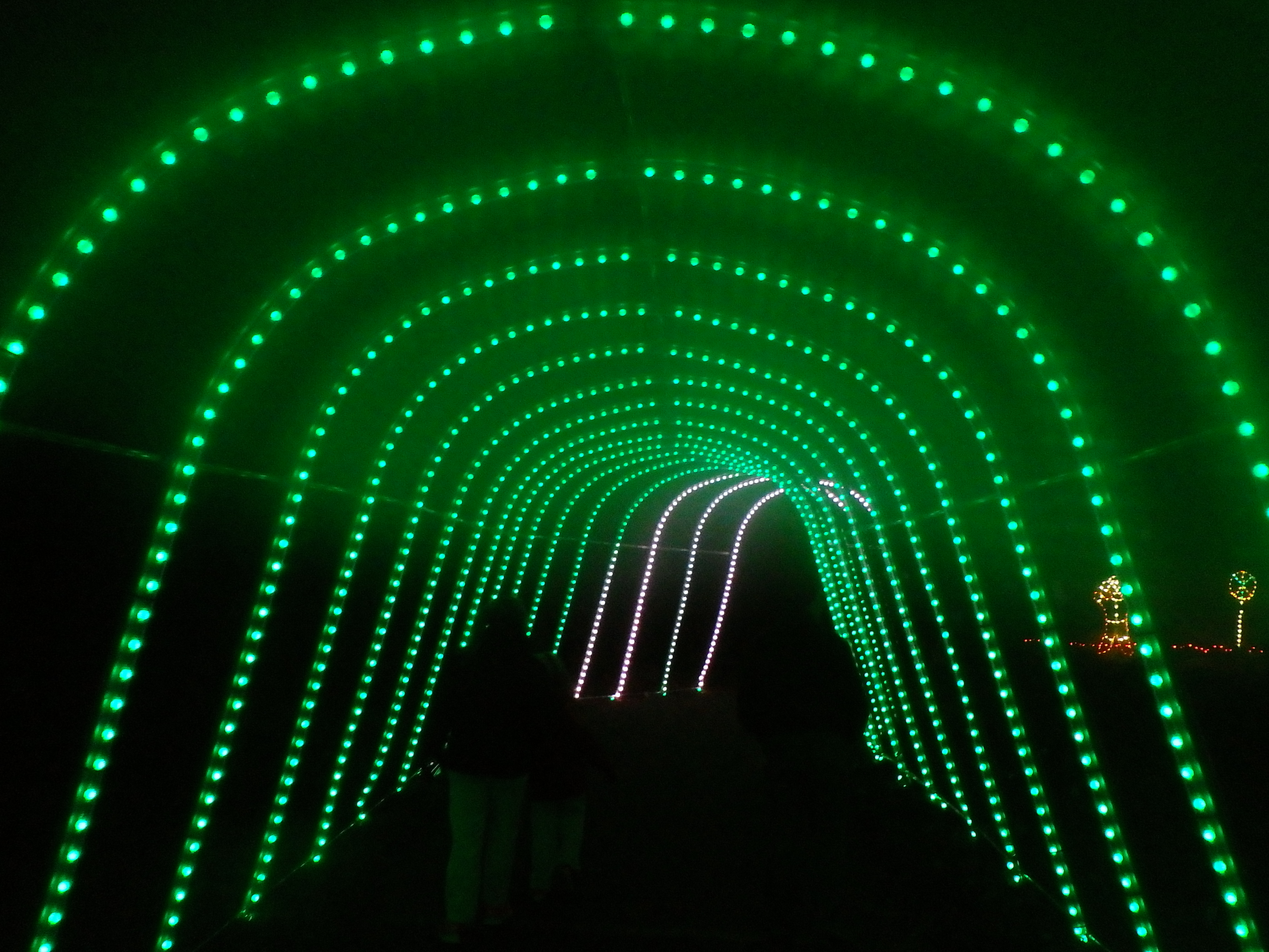Color-changing arch at Winter Walk of Lights