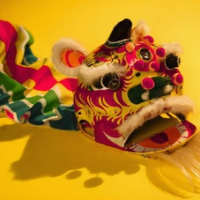 Lunar New Year celebrations in DC and VA