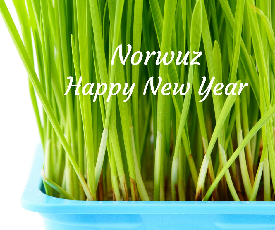 Norwuz Persian New Year wheatgrass, see celebrations in Northern Virginia at Fairfax Family Fun