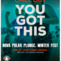 Northern Virginia Polar Plunge:  Brave fun for charity