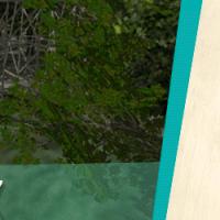 Help create the first wooden coaster at Busch Gardens!