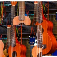 Ukulele festival brings the sounds of the tropics to Fairfax