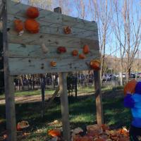 Pumpkin smashing in Northern Virginia