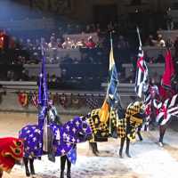Timeless excitement for all ages at Medieval Times