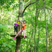 Go Ape Springfield: new ropes course opens next month
