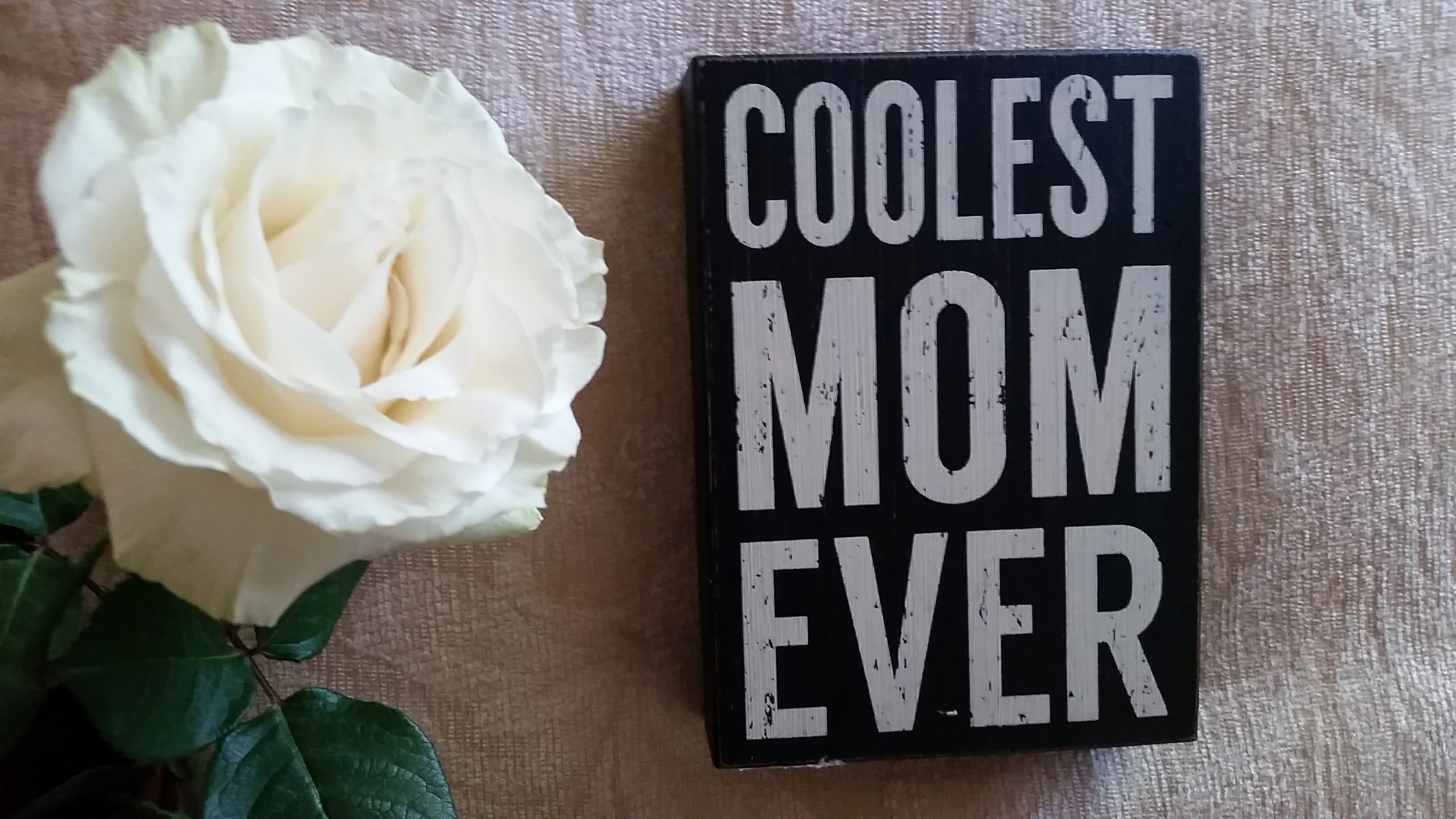 White rose and sign saying Coolest Mom Ever for Mother's Day