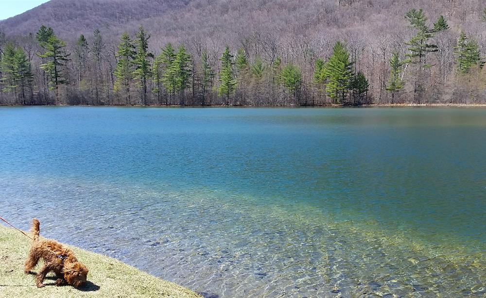 Equinox Pond Manchester Vermont