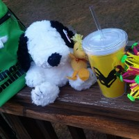 Win Kings Dominion tickets and goodies!