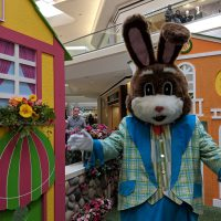 Easter Bunny is back at Fair Oaks Mall Bunnyville!
