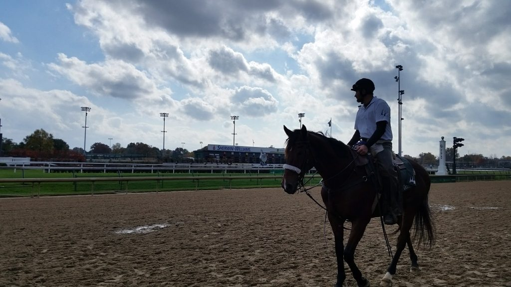 Man on a horse on the track at Churchill Downs, home of the Kentucky Derby