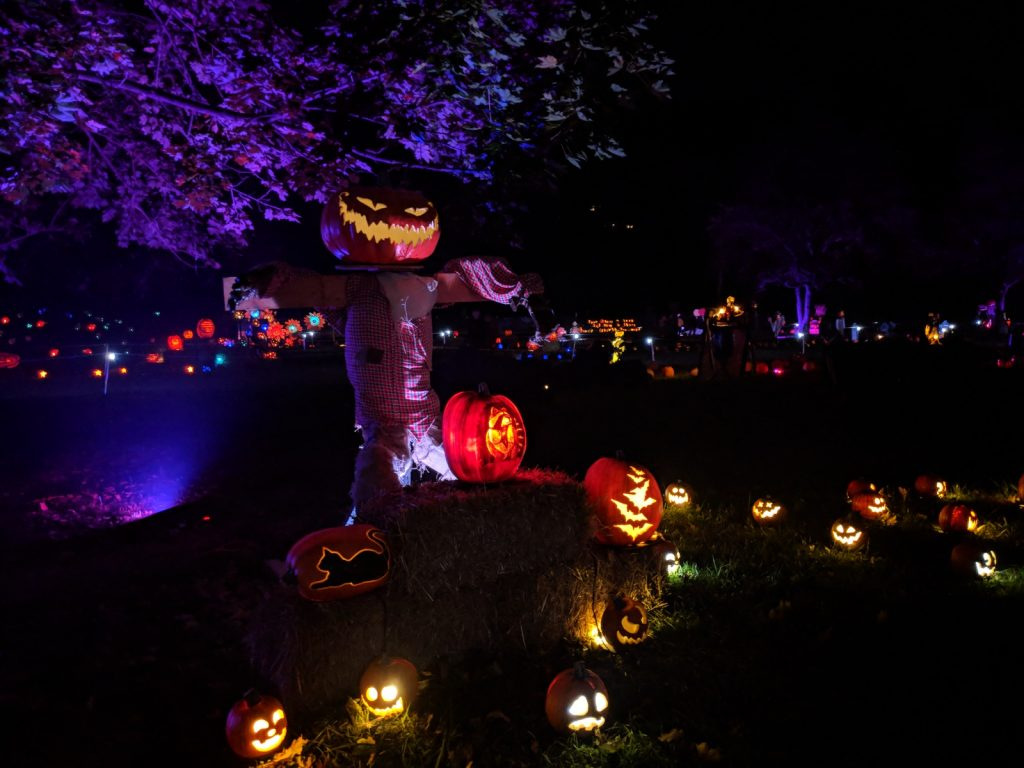 The Glow jack-o-lantern at Lake Fairfax Park exhibit