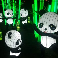 Kennedy Center REACH hosts free winter lantern display