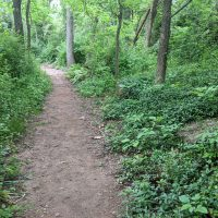 Area parks open in Northern Virginia